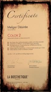 Zertifikat color 2
